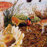 Wonderland 1 1998 - Photograph - 50x60 cm